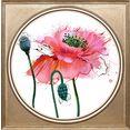 queence artprint op acrylglas »blumen« roze
