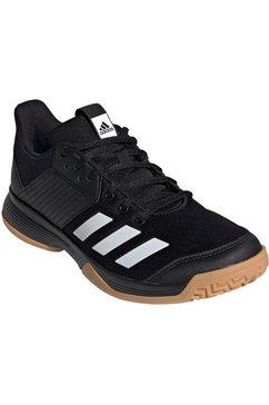 adidas performance indoorschoenen »ligra 6« zwart