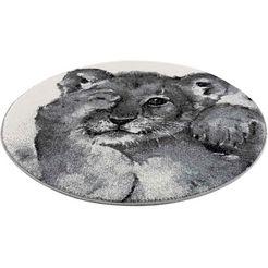 carpet city vloerkleed savanna 9362 vloerkleed voor de kinderkamer, laagpolig vloerkleed voor alle kamers grijs