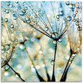artland print op glas pluizenbol blauwe diamanten (1 stuk) blauw