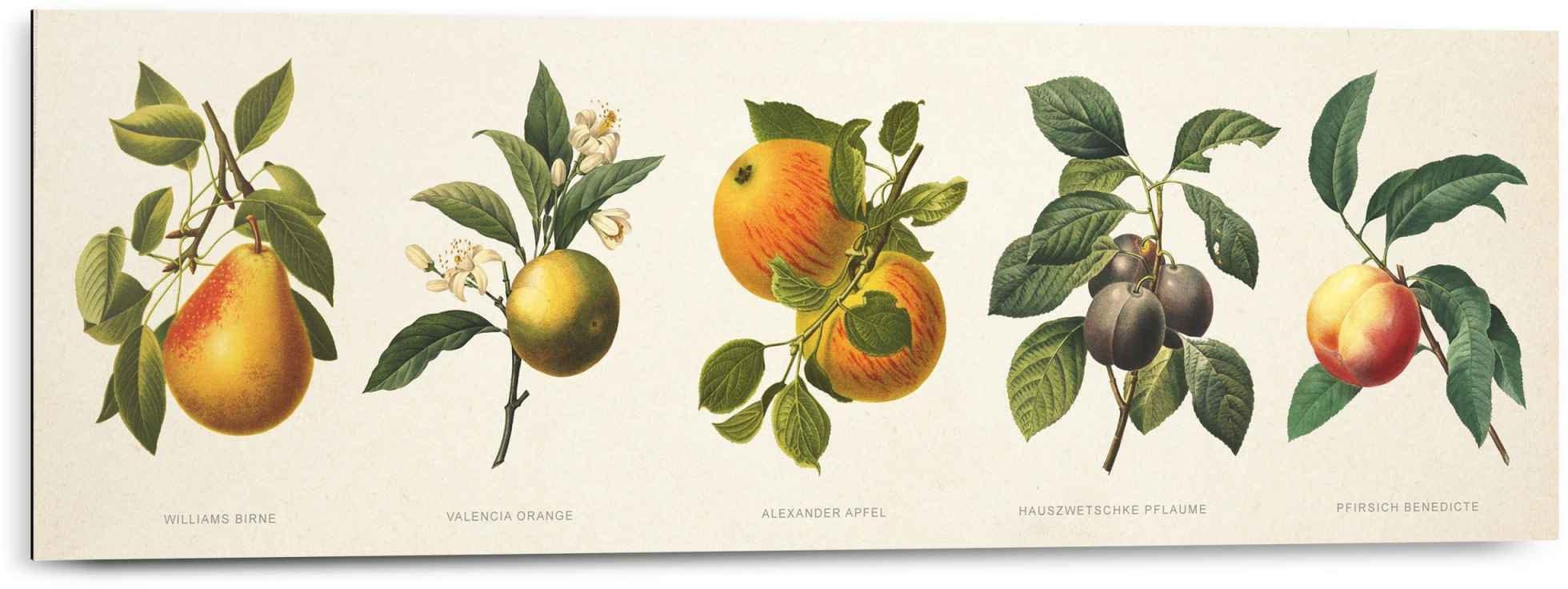 Reinders! artprint vruchten nostalgisch - vruchten - jam (1 stuk) voordelig en veilig online kopen