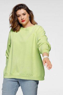 levi's plus sweatshirt groen