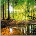 artland print op glas bos met beek groen