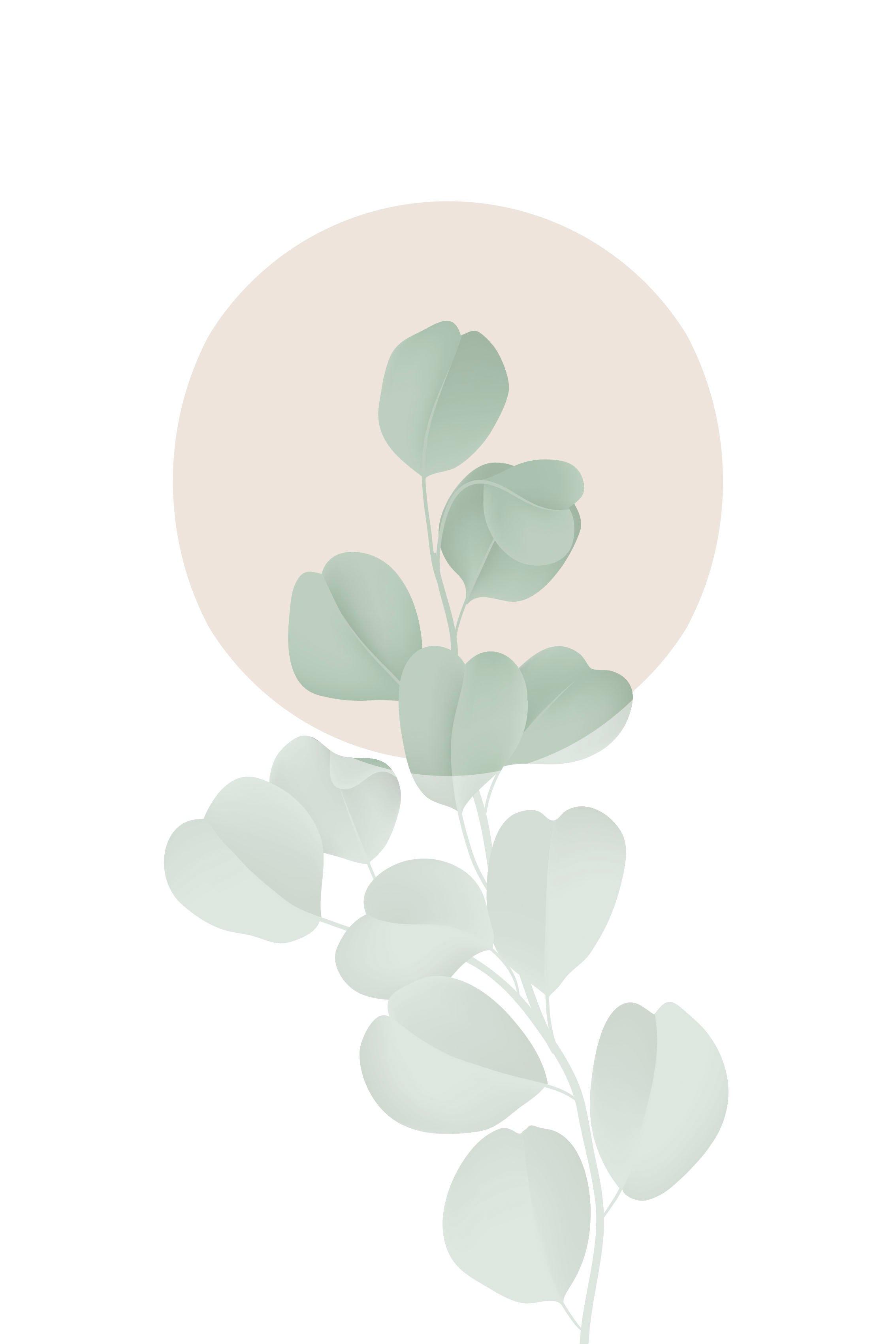 queence artprint op linnen Blaadjes roze cirkel online kopen op otto.nl