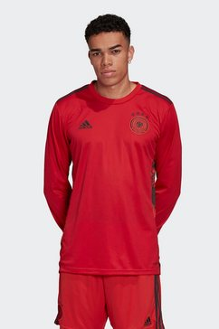 adidas performance keepersshirt »em 2020 dfb torwart-heimtrikot« rood