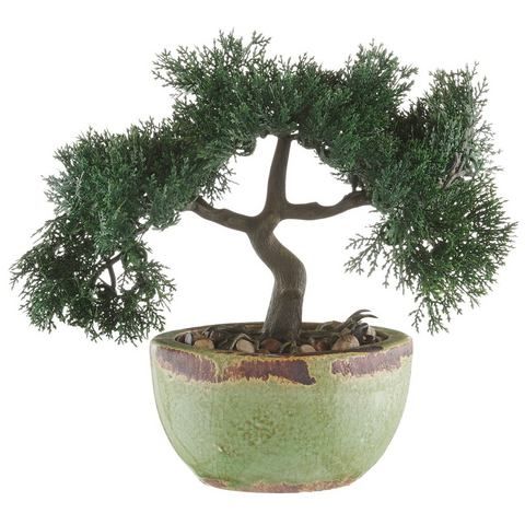 HOME AFFAIRE Kunstplant Bonsai in set van 2