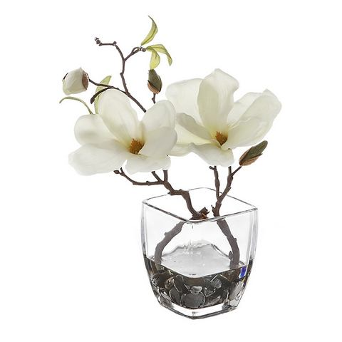 Deco-magnolia in glas