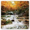 wall-art print op glas autumn waterfall 50x50 cm oranje