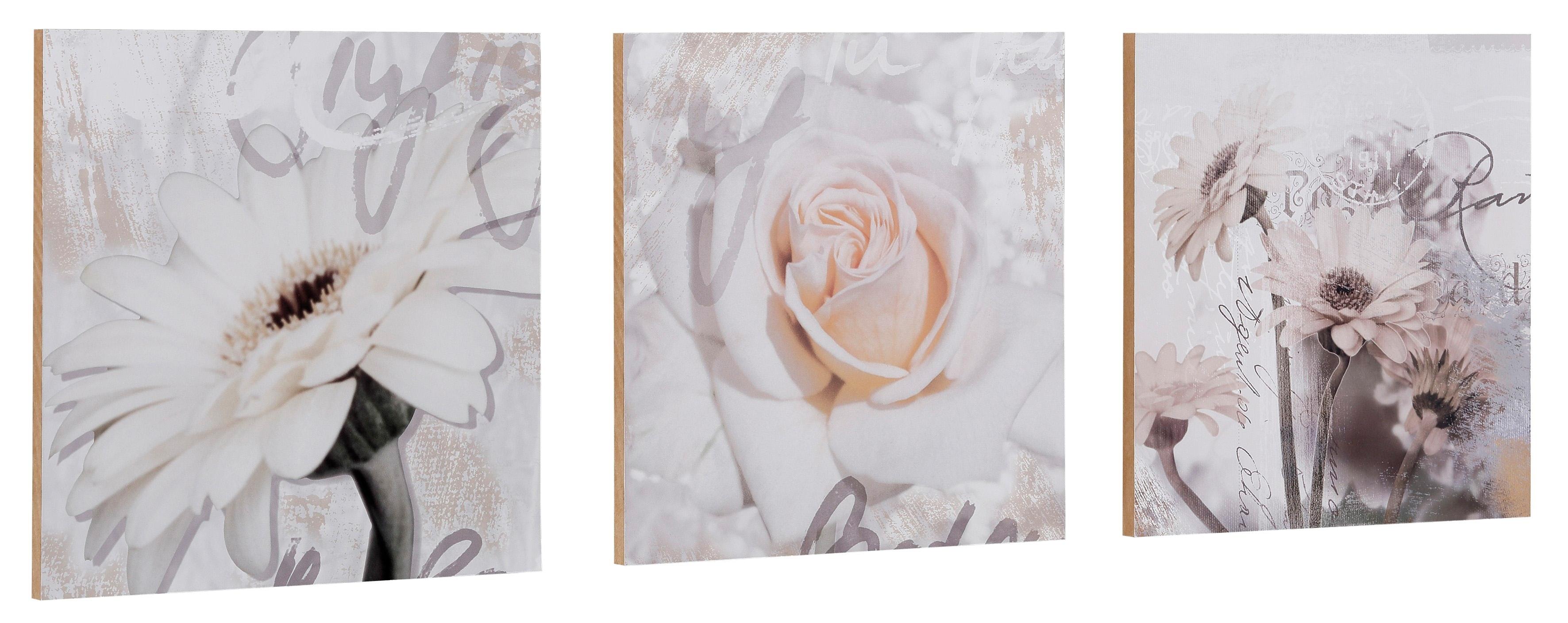 Home affaire artprint S., D.: Gerbera's detail 3-delig, ieder 29/29 cm - gratis ruilen op otto.nl