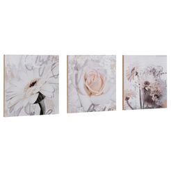 home affaire artprint »s., d.: gerbera's detail« (3-dlg.), elk 29x29 cm wit
