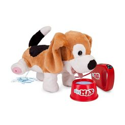 pipi max beagle wit