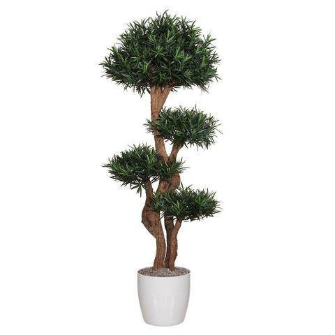 Kunstplant Podocarpusboom met natuurlijke stam