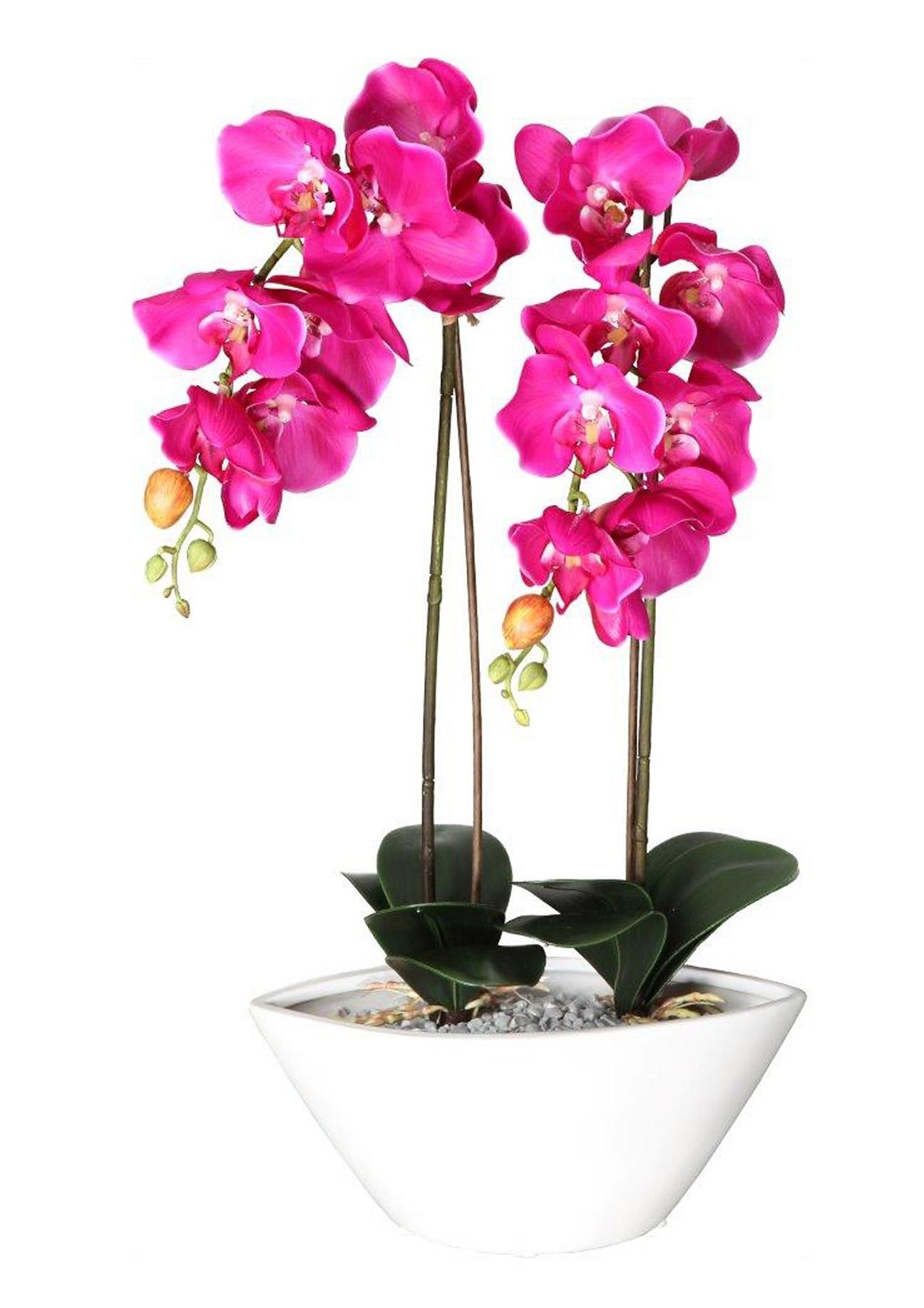 deco orchidee van textiel en kunststof bestel nu bij otto. Black Bedroom Furniture Sets. Home Design Ideas