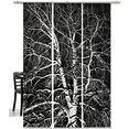emotion textiles paneelgordijn berk hxb: 260x60, inclusief bevestigingsmateriaal (3 stuks) zwart