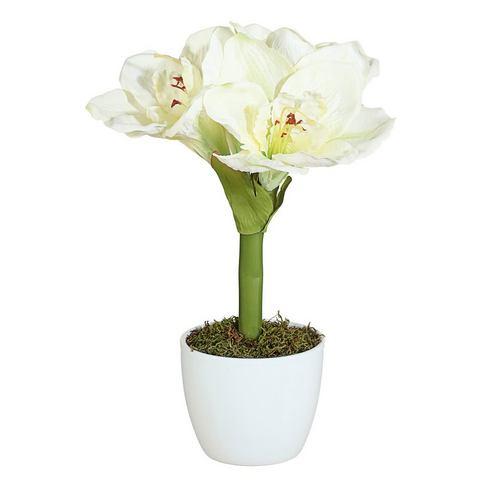 Kunstplant Amaryllis in set van 2