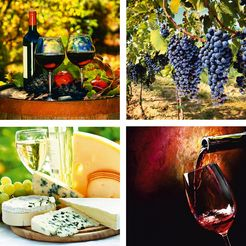 home affaire artprints op linnen »glazen, druiven, kaas, wijn«, 4x 30x30 cm rood
