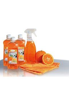 CleverClean® reinigings-set (5-delig) op basis van sinaasappelsap