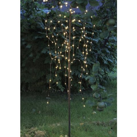 LED-boom Treurwilg