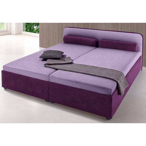 MAINTAL Bed in 5 kleuren vast 5 zones binnenveringsinterieur paars Maintal 488703