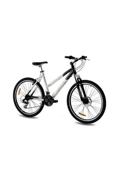 Mountainbike »Evolution, 66,04 cm (26 inch)«