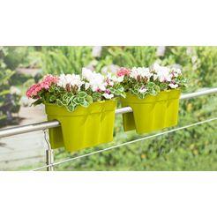 bloempot »flowerclip xxl«