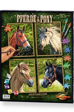 schipper schilderen op nummer paarden  pony's multicolor