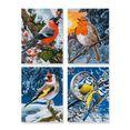 schipper schilderen op nummer wintervogels multicolor