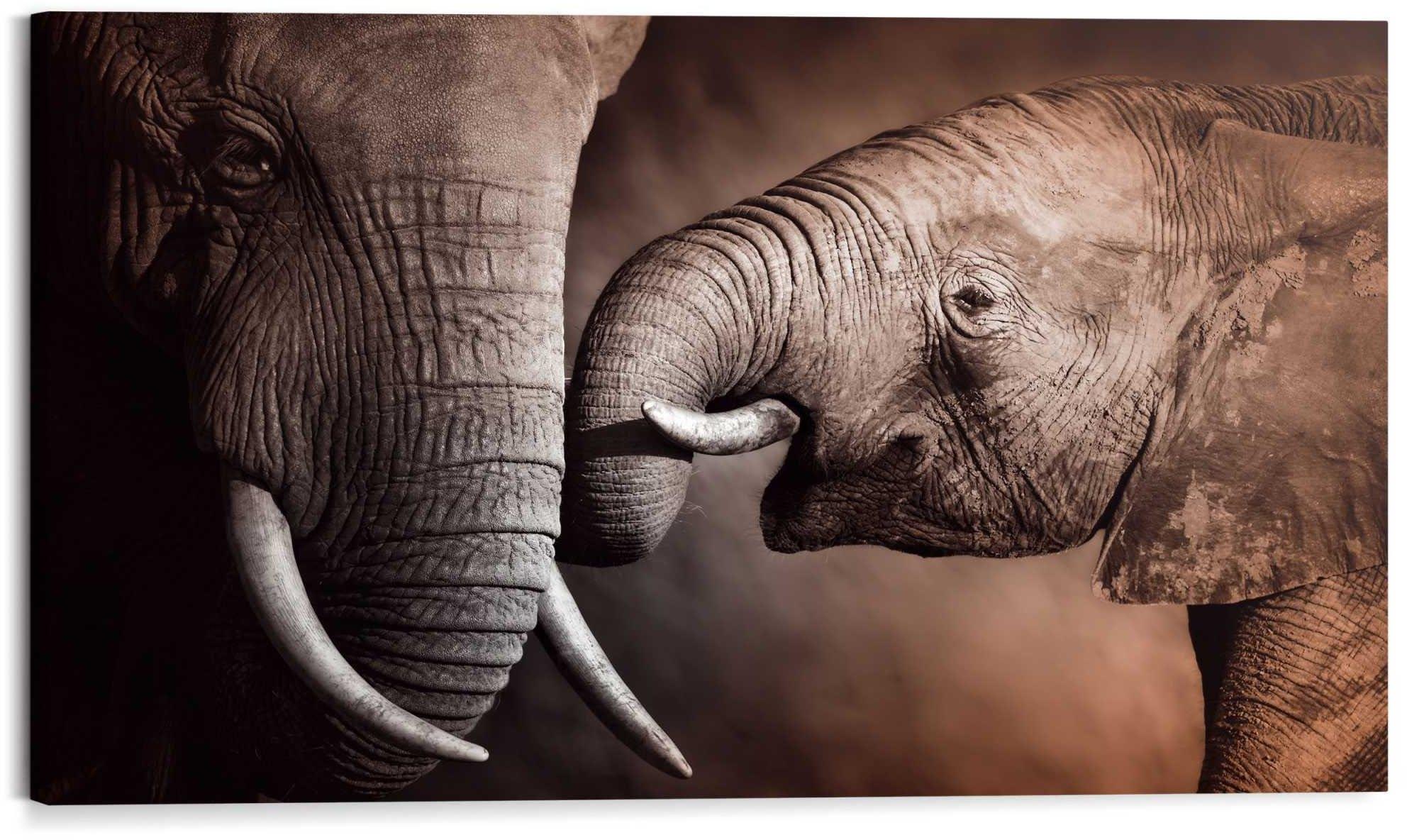 Reinders! artprint Wandbild Elefanten Familie Afrika - Mutterliebe - Rüssel - Stoßzähne (1 stuk) veilig op otto.nl kopen