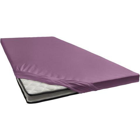 Topper Hoeslaken Damai 8 cm Purple (Katoen)