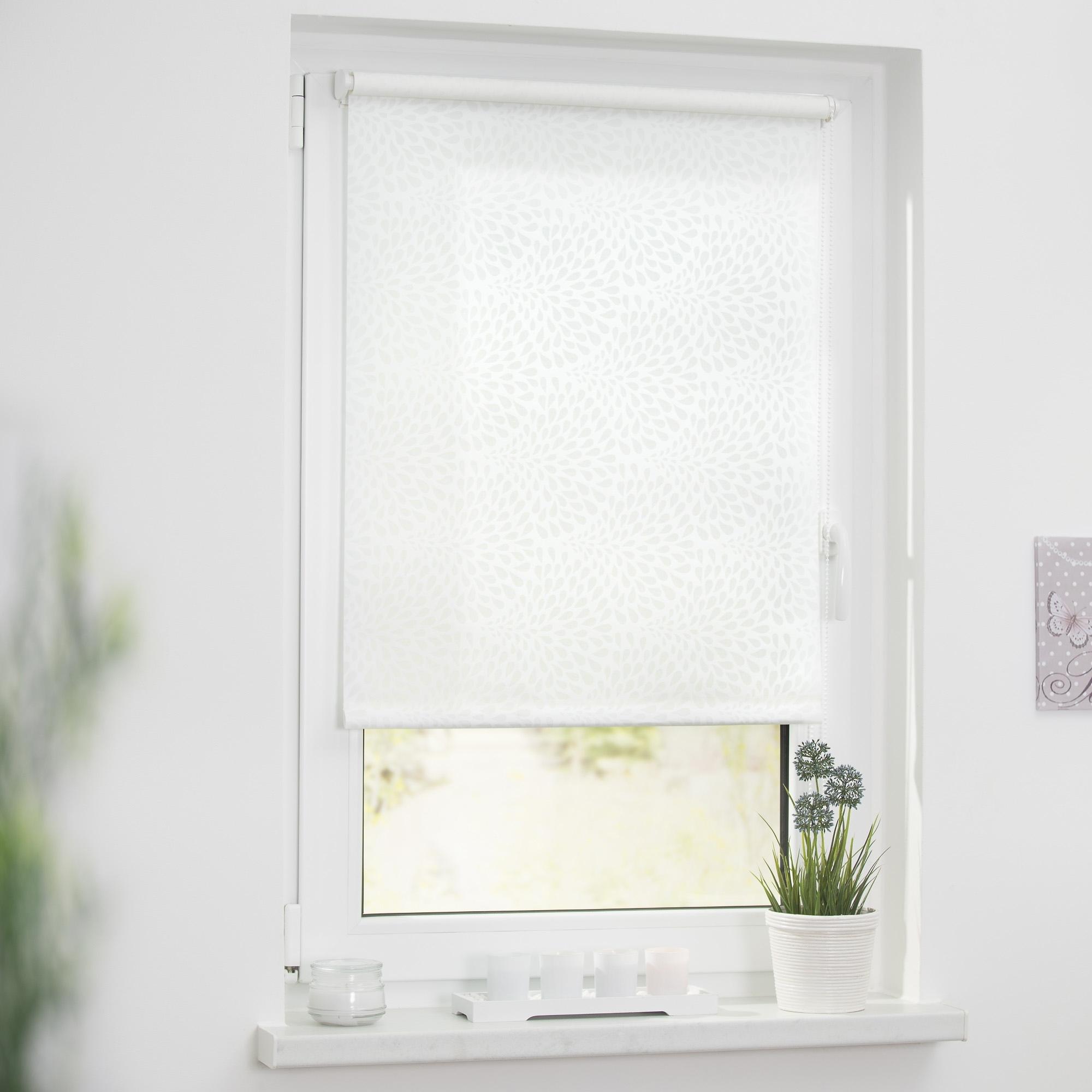lichtblick rolgordijn klemmfix decor drops online bij otto. Black Bedroom Furniture Sets. Home Design Ideas