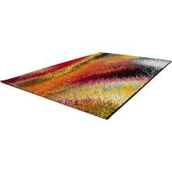 vloerkleed, »lima 300«, lalee, rechthoekig, hoogte 15 mm, machinaal geweven multicolor