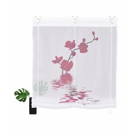 Vouwgordijn, Home Wohnideen, 'Orchidee', per stuk