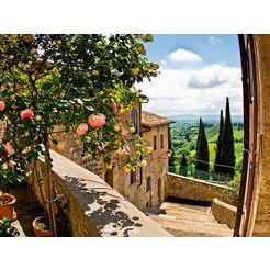 home affaire print op glas banepetkovic: rozen in san gimignano, met toscaans landschap 80-60 cm groen