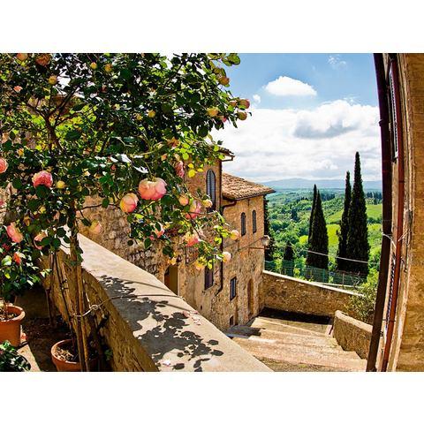 HOME AFFAIRE glazen artprint banepetkovic: rozen in San Gimignano, met Toscaans landschap, 80x60 cm