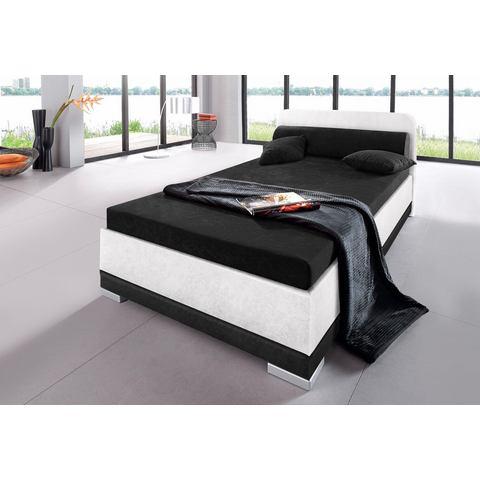 Bed micro velours in 4 verschillende uitvoeringen Made in Germany 140x200 cm hoogte 55 cm wit Maintal 758018