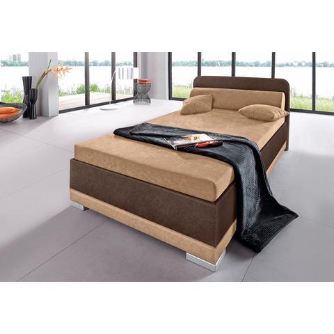 Bed micro velours in 4 verschillende uitvoeringen Made in Germany 80x200 cm hoogte 42 cm bruin Maintal 540602