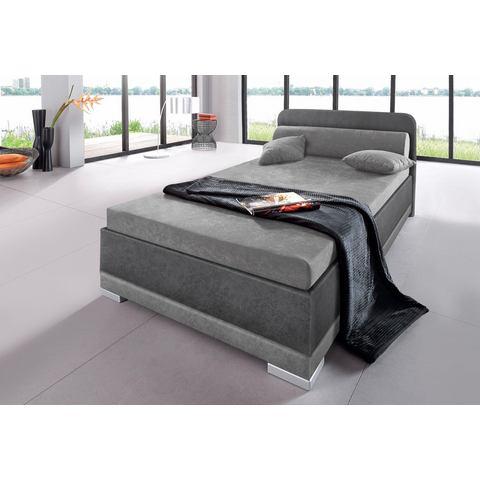 Bed micro velours in 4 verschillende uitvoeringen Made in Germany 80x200 cm hoogte 42 cm grijs Maintal 673781