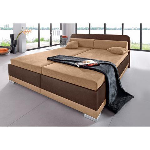 Bed micro velours in 4 verschillende uitvoeringen Made in Germany 160x200 cm hoogte 55 cm bruin Maintal 376083