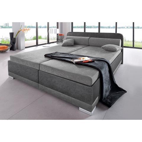 Bed micro velours in 4 verschillende uitvoeringen Made in Germany 180x200 cm hoogte 42 cm grijs Maintal 671098