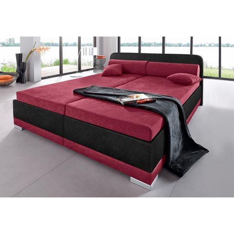 Bed micro velours in 4 verschillende uitvoeringen Made in Germany 180x200 cm hoogte 42 cm rood Maintal 277285