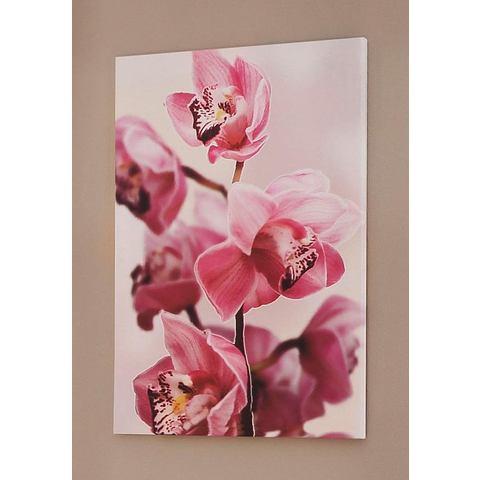 Artprint 'Roze orchidee'
