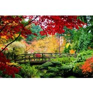home affaire fotobehang »bridge in japanese garden« groen