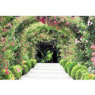 home affaire fotobehang rose arch garden groen