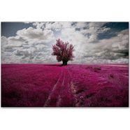 home affaire aluminium-dibond artprint »the lonely tree«, in 2 afmetingen roze