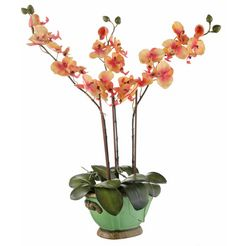home affaire kunstbloem »orchidee« oranje