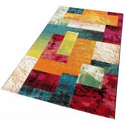 vloerkleed, »lima 303«, lalee, rechthoekig, hoogte 15 mm, machinaal geweven multicolor