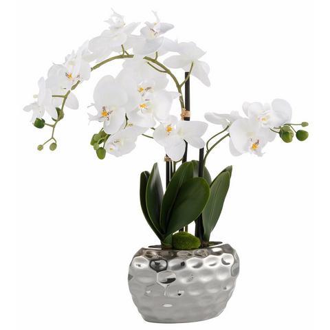 Orchidee van kunststof