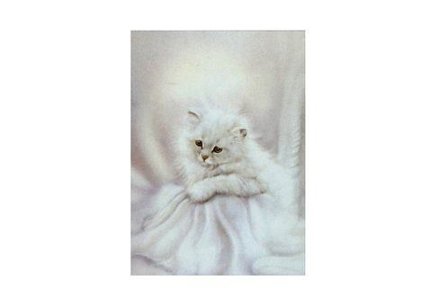 Artprint 'Romantic Kitten'