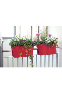 khw set: bloempot »flowerclip xl« rood