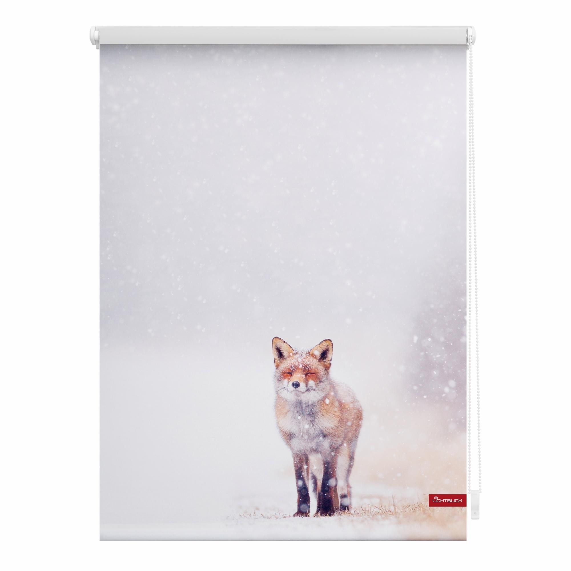 Lichtblick Rolgordijn, zijbediening, »Klemmfix decor vos in sneeuw«, lichtwering, standaardmaat, zonder boren nu online kopen bij OTTO